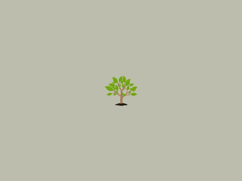 missing garden image